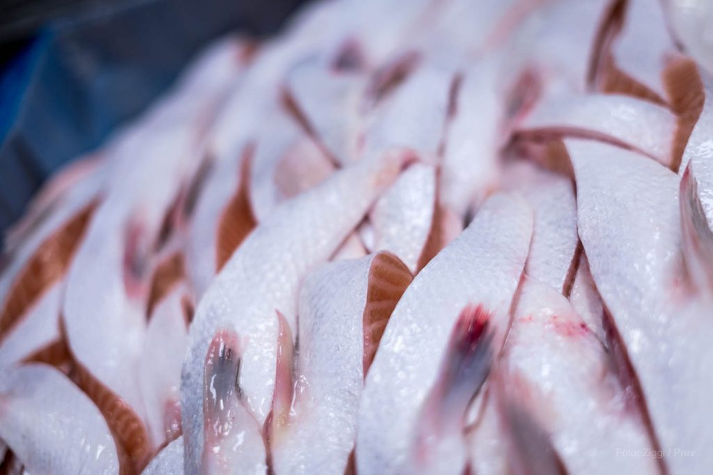 9352Our Solutions – Seafood production