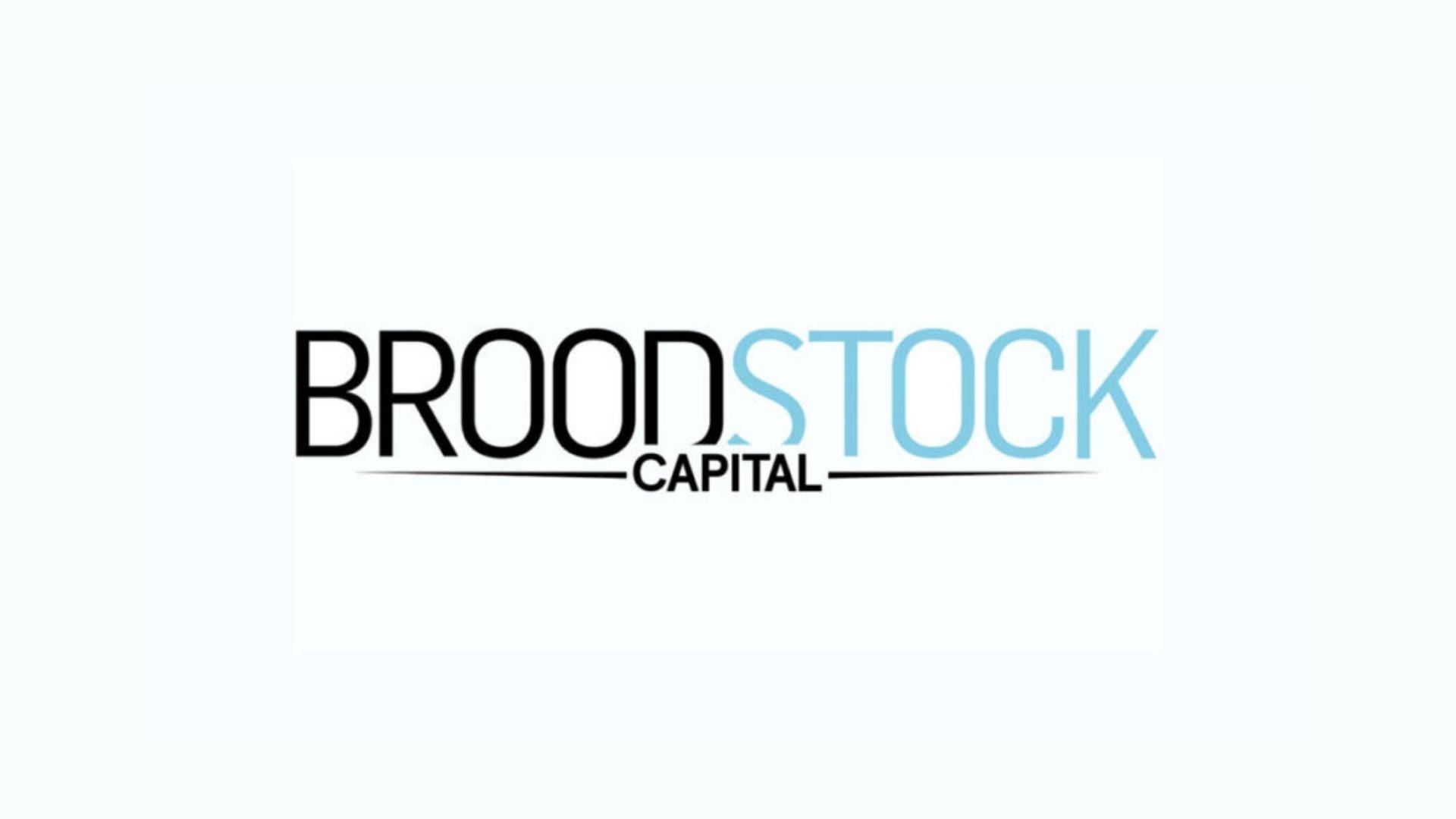 Broodstock capital partners logo